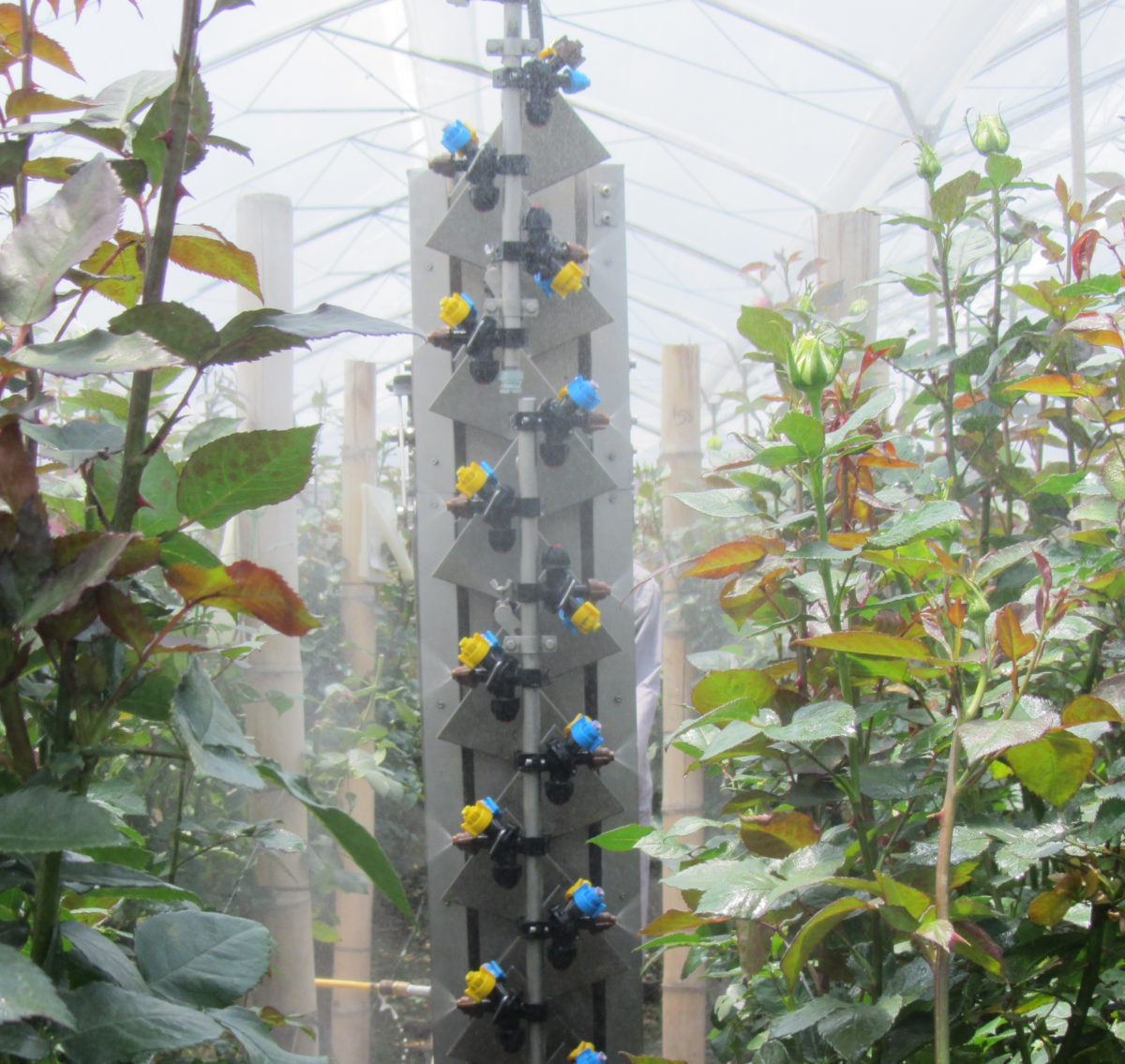 Micothon Mira spraying system for plastic greenhouses
