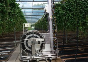 Micothon Spraying robot for Strawberry runners