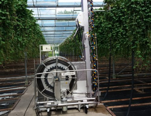 Spraying Robot for Strawberry Runners